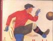 Il calcio una storia mondiale