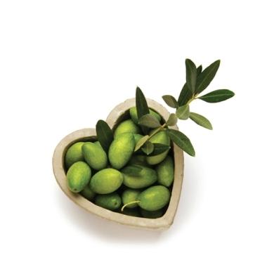 Molitura olive conto terzi