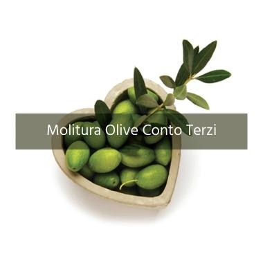 Molitura olive conto terzi Velletri