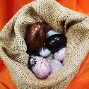 Uova in pietre dure e radica
