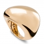 Shaped ring in burnished yellow gold