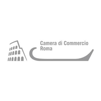 camera di commercio di roma