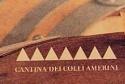 Cantina dei Colli Amerini
